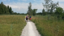 Kiesweg im Naturschutzgebiet