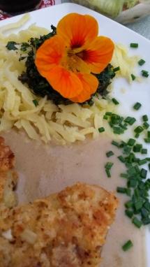 Mahlzeit mit Blüte